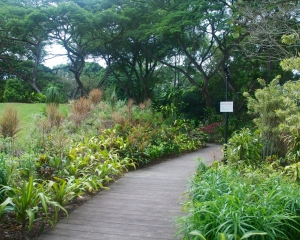 Botanical-325