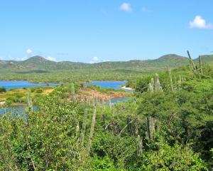 Looking-north-across-Lake-Gotomeer