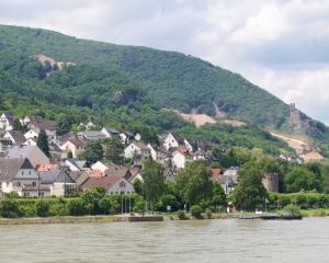 Rhine-4