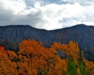 Fall-Foliage-along-the-Alaska-Hwy-_7_