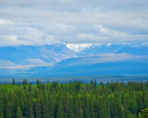 Wrangell-St_-Elias-National-Park