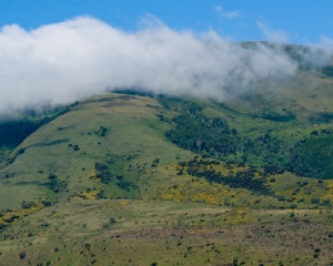 Ngorongoro Highlands