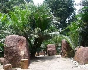 Botanical-338